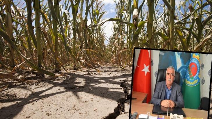 Kuraklık, çiftçileri korkutuyor
